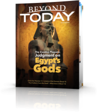 Judgment on Egypt's Gods