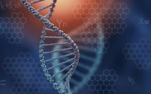 DNA - Part 2