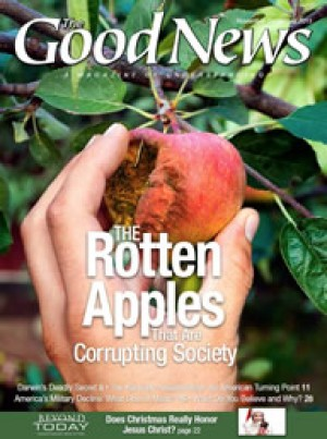 The Rotten Apples That Are Corrupting Society