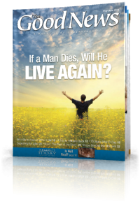 If a Man Dies, Will He Live Again?
